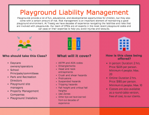 Playground Liability and Risk Management Infographic